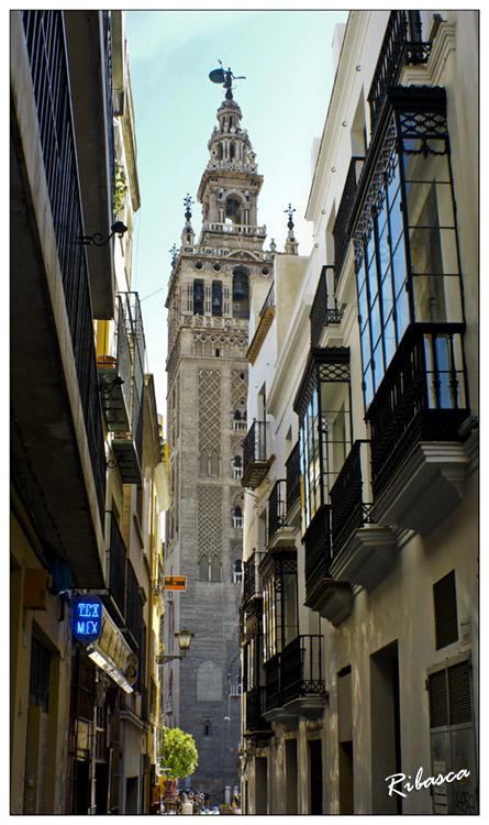 Y al final de la calle... en Paisajesgiralda-placentines.jpg